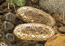 Wikinger Fibel ~ WINROND ~ 7.3 cm - Schildkröten-Brosche - Vintage Bronze - Windalf.de