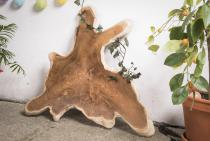 Holz Dekor Platte ~ BEA ~ Servierplatte - Wurzelholz - 84 cm - Unikat - Windalf.de