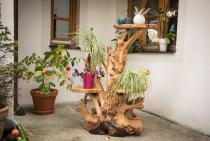 Blumenregal ~ AMALY ~ Unikat mit Leguan - Wurzelholz - Windalf.de